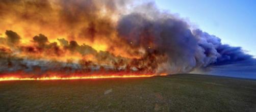 Continuano a bruciare migliaia di alberi dell'Amazzonia