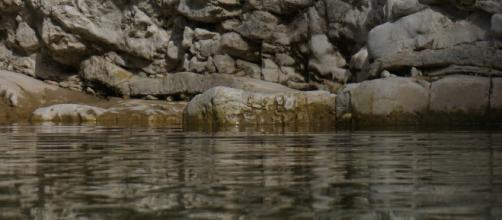 Le acque contaminate dell'Amazzonia