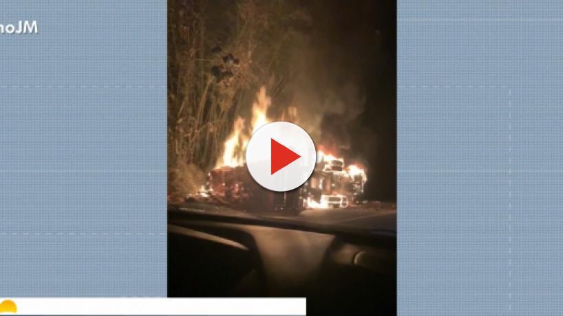Colisão entre ônibus e carreta deixa cinco mortos no sul da Bahia
