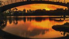 Parque Ibirapuera chega aos 65 anos oferecendo várias opções de diversão
