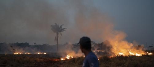 """Moro anuncia que vai investigar """"Dia do fogo"""". Ibama teria sido ignorado ao solicitar ajuda. Foto: Arquivo Blasting News."""
