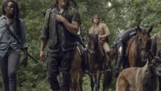 The Walking Dead : les animaux ont la cote auprès des survivants et du public