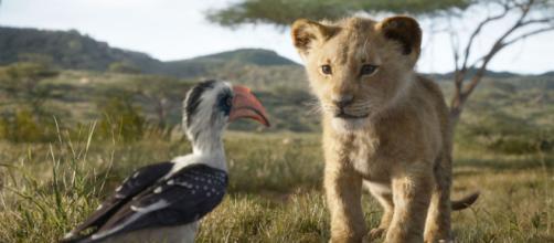 Avengers : Endgame, Le Roi Lion, Captain Marvel... Disney signe ... - ecranlarge.com