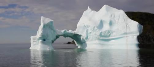 'Iceberg tourism': Newfoundland's new-found livelihood. [Image source/euronews (in English) YouTube video]
