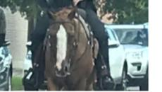 Un hombre de raza negra atado con una soga en Texas recuerda a los años de esclavitud