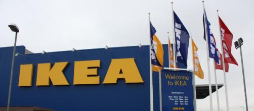 Assunzioni Ikea: posti di lavoro per diplomati e laureati