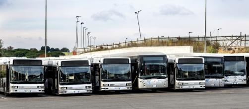 Autobus del consorzio Roma TPL.
