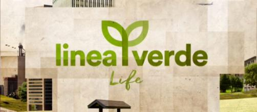 Linea Verde Life 2019/2020: la prima puntata sabato 14 settembre in tv su Rai 1 e in streaming online su Raiplay - alpaha.it