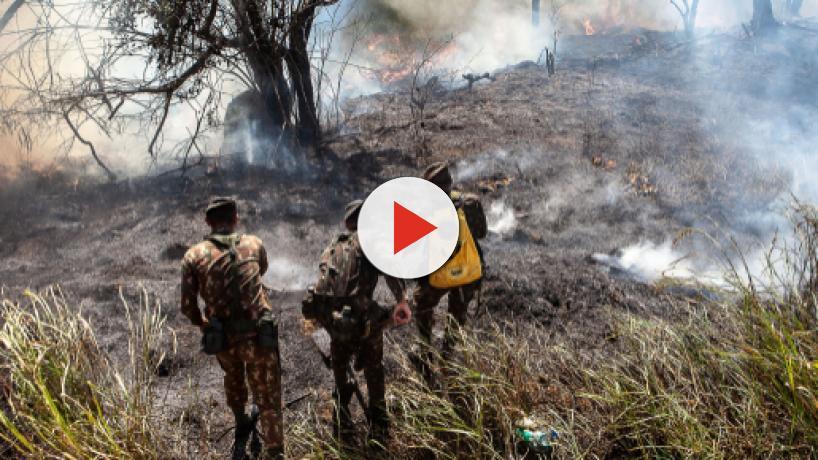 Governadores da Amazônia Legal correm contra o tempo na retomada de investimentos