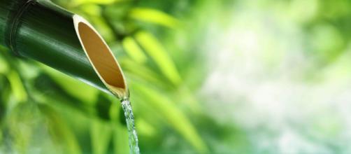 Las terapias de salud con aguas termales con muy utilizadas en Japón. - rocnature.com