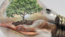 Biodiversità, la tesi dell'Università di Lund: sarebbe causata da un gigantesco asteroide