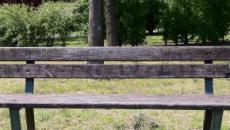 Cremona, rapporto in piena notte su una panchina del parco: denunciata una coppia