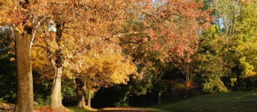 equinozio di autunno, il 23 settembre