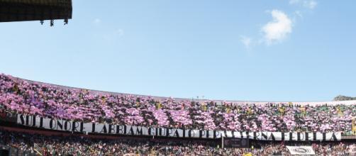 Il Palermo chiama i tifosi: allenamento a porte aperte allo stadio ... - stadionews.it