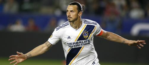 I'm the best that has ever played in MLS' - Ibrahimovic makes ... - goal.com