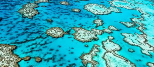 Grande Barrière de corail vue du ciel
