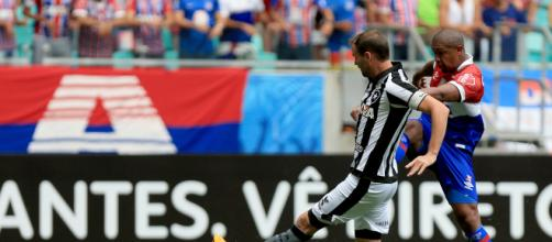 Bahia e Botafogo jogam em Salvador. (Felipe Oliveira/EC Bahia)