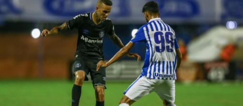 Avaí e Grêmio duelam em Porto Alegre. (Lucas Uebel/Grêmio)