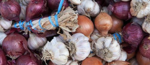 Aglio e cipolla sono ricchi di flavonoidi e composti organici solforati ad azione antitumorale. (Canva)