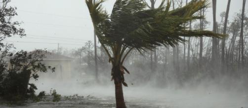 El devastador paso del huracán Dorian dejó el primer fallecido en Las Bahamas. - infobae.com