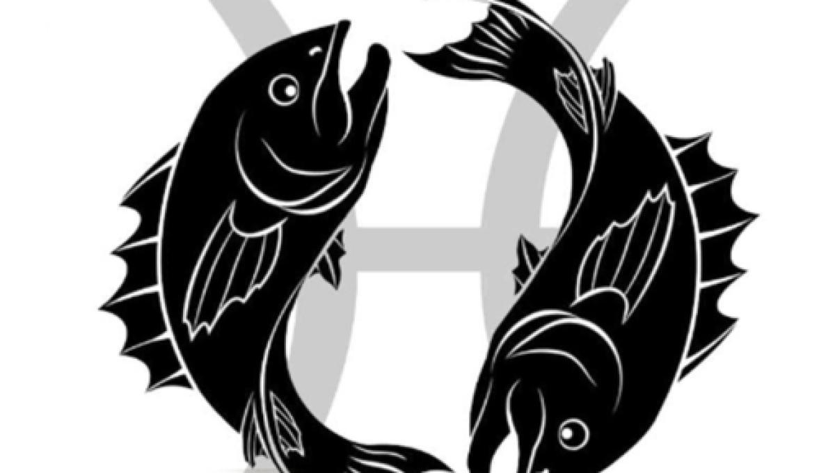 Lotta pesce servizio di incontri