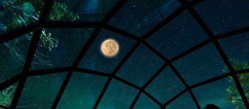'Sfogliando la Luna', dal 7 settembre al 9 novembre 2019