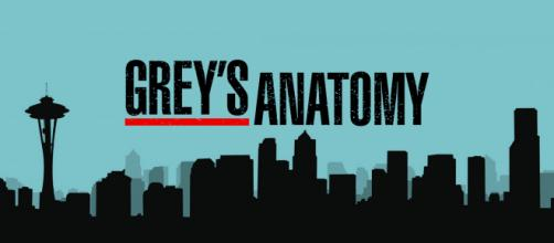 Grey's Anatomy 16 su FoxLife il 28 ottobre, la Vernoff rivela un salto temporale nel 16x01
