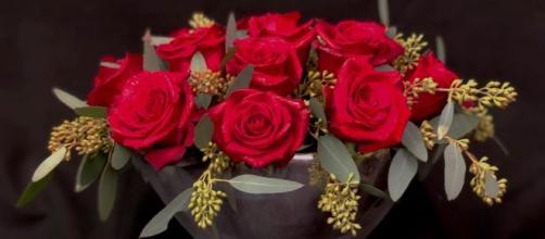 Previsioni astrologiche per la giornata del 24 gennaio: Leone intraprendente, instabilità amorosa per il Cancro.
