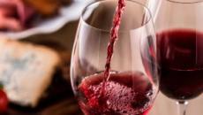 5 libros para amantes principiantes del mundo del vino