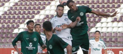 Goiás eliminou o Palmeiras da Copa São Paulo. (Arquivo Blasting News).