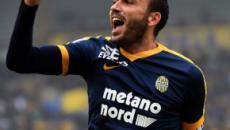 Hellas Verona, verso il Bologna: dubbi solo in attacco, Pazzini scalpita, Pessina rischia