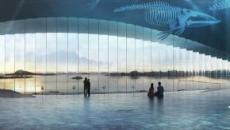 The Whale: in Norvegia il primo museo dove vedere le balene in libertà
