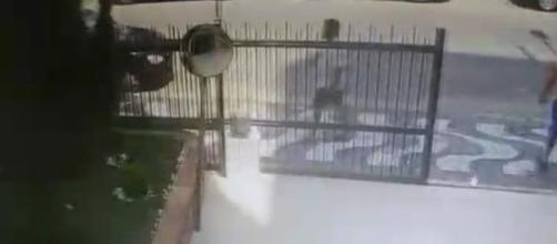Câmera registrou marido da professora em frente a um prédio de São Vicente. (Reprodução).