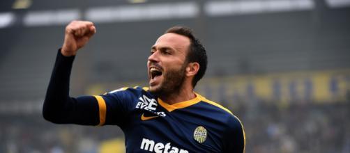 Hellas Verona, Pazzini potrebbe giocare titolare con il Bologna
