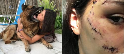 O registro mostra o exato momento da mordida no rosto de Lara Sanson. (Reprodução/Twitter/@LaruSanson)