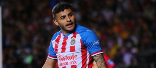 Los jugadores, responsables de la crisis de Chivas: Alexis Vega.