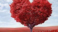 5 proverbi dedicati al mese di febbraio