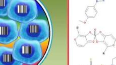 Cancro: ricerca su oltre 4 mila farmaci già approvati individua 50 nuovi antitumorali