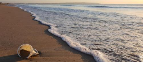 Vaso de plástico en la orilla del mar