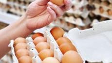 Uova a marchio Conad e Amadori ritirate dal mercato: rischio contaminazione