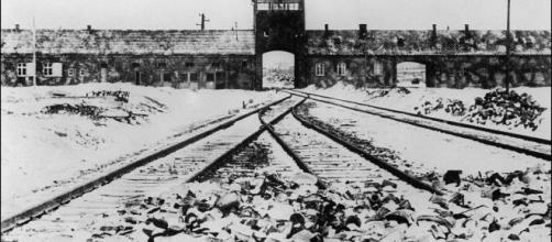 La Shoah, el horror de los campos de concentraccion.