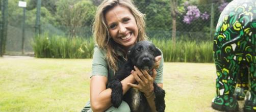 'BBB20': Luisa Mell cobra uma explicação da Globo depois de comentário sobre zoofilia. (Arquivo Blasting News)