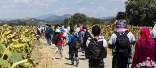 Los inmigrantes no se detuvieron en su camino hacia Estados Unidos en 2019.