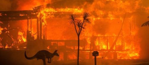 Emergenza in Australia: il bilancio è di 24 morti e 100 mila sfollati. - Credit: possibile.com