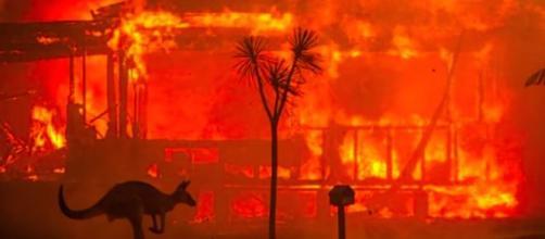 Les feux en Australie dévastent le continent. Credit: Capture d'écran/BBC