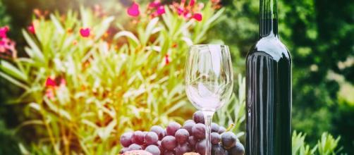 Ad Assisi il 13 gennaio torna l'expo dei vini naturali italiani