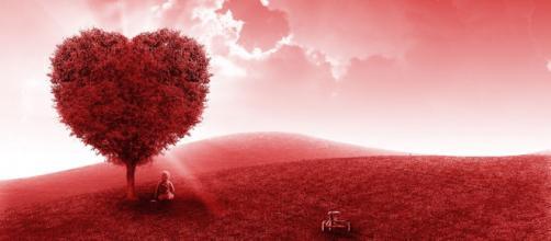 Oroscopo sull'amore di novembre: flirt per i Pesci, Cancro passionale.