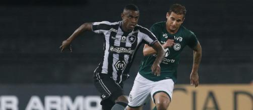 Buscando sair das últimas posições do Campeonato Brasileiro, Botafogo e Goiás se enfrentam. (Arquivo Blasting News)