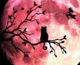 L'oroscopo settimanale dal 26 ottobre all'1 di novembre, 1ª sestina: Ariete voto 10.