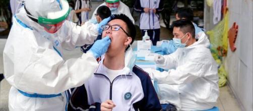 Testeos de coronavirus en China.
